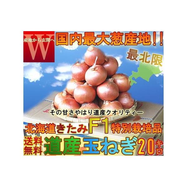 たまねぎ  北海道産北見 岩見 大玉 M〜2L大サイズ 玉ねぎ 送料無料 PREMIUM 話題のたまねぎF1 お徳用 大量買い 20kg たまねぎ 玉葱 タマネギ