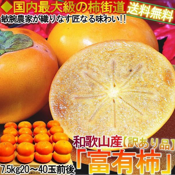 産地直送 和歌山 富有柿 約7.5kg 和歌山県産 訳あり品 JA共撰品 季節ごとに旬の品種を厳選!本場で育てた抜群の美味しさ