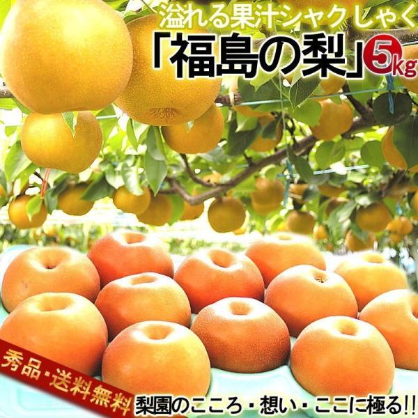 梨 幸水・豊水・秋月・新高・南水 約5kg 福島県産 贈答規格 日本ナシの大産地で育てた高品質なギフトフルーツ! ふくしま