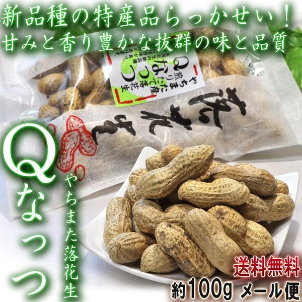Qなっつ やちまた落花生 100g×2袋 千葉県・八街市産 見た目と味わい共に優れた新品種らっかせい!