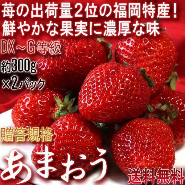 あまおう いちご 約270g×2パック 福岡県産 デラックス〜グランデ規格 贈答品 およそ6年の時間をかけて商品化された苺の王様 博多あまおう|wamers