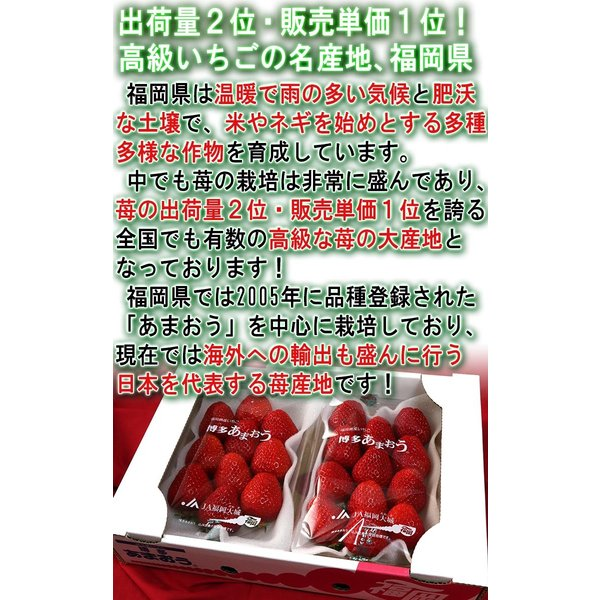 あまおう いちご 約270g×2パック 福岡県産 デラックス〜グランデ規格 贈答品 およそ6年の時間をかけて商品化された苺の王様 博多あまおう|wamers|03