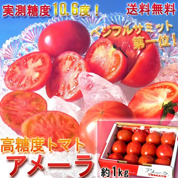 アメーラ フルーツトマト 約1kg 静岡・長野県産 贈答品 しずおか食セレクション認定 糖度7.2度保障!高い評価を受けるギフト最適なブランド野菜