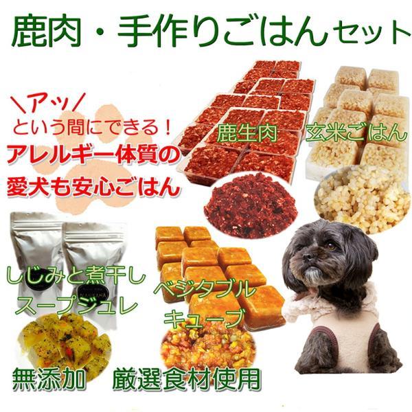 犬用 手作り 簡単 ごはん アレルギー 体質 鹿肉 スターター セット 初心者 無添加 国産 トッピング 材料  ダイエット ドッフード ワンバナ 帝塚山WANBANA|wanbana
