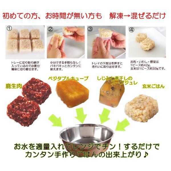 犬用 手作り 簡単 ごはん アレルギー 体質 鹿肉 スターター セット 初心者 無添加 国産 トッピング 材料  ダイエット ドッフード ワンバナ 帝塚山WANBANA|wanbana|02