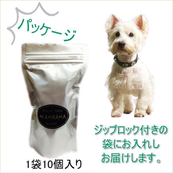犬用 手作り 簡単 ごはん アレルギー 体質 鹿肉 スターター セット 初心者 無添加 国産 トッピング 材料  ダイエット ドッフード ワンバナ 帝塚山WANBANA|wanbana|08
