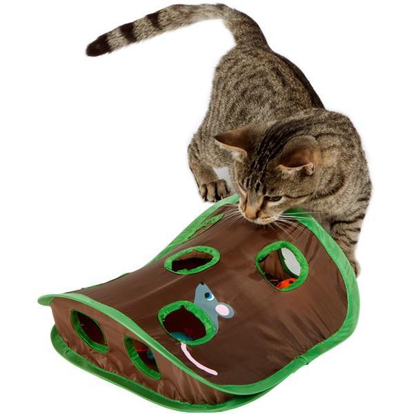 2月22日は猫の記念日 愛猫と遊んで特別なひとときを
