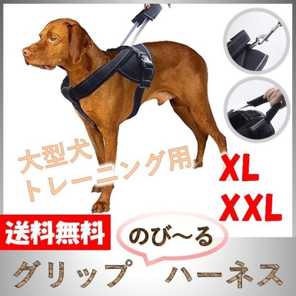 犬用 ハーネス 大型犬 中型犬 超大型犬 しつけ 胴輪 トレーニング 引っ張り防止 高品質 伸縮 のび〜るハーネス XL XXL wanwan-square-garden