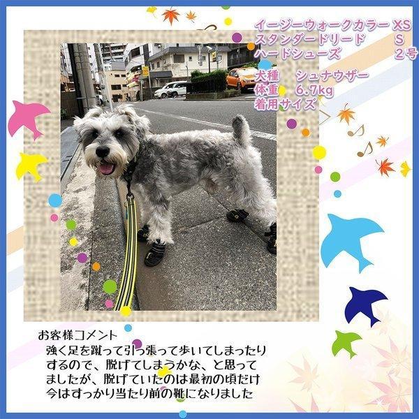 犬 リード 犬用 リード 中型犬 大型犬 持ちやすい ソフトハンドル おしゃれ 超大型犬 小型犬 スタンダードリード メール便送料無料 wanwan-square-garden 13