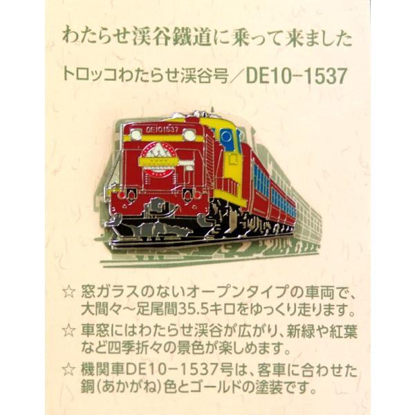 ピンバッジ「渓谷号・DE10-1537」|watarase|02