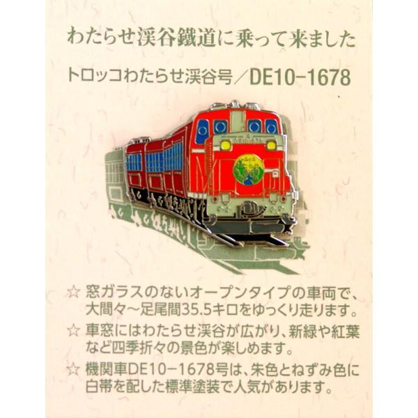 ピンバッジ「渓谷号・DE10-1678」 watarase 02