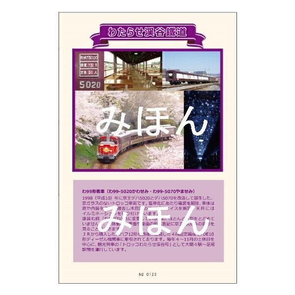 京王初代5000系コラボ乗車券(わ鐵版)|watarase|02