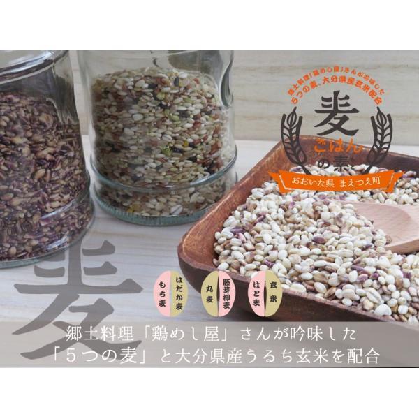 麦ごはんの素 200g 食物繊維 水溶性食物繊維βグルカン 国産 殻付もち麦60%配合 腸活 送料無料セール|watasyoku|02