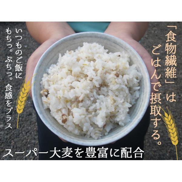 麦ごはんの素 200g 食物繊維 水溶性食物繊維βグルカン 国産 殻付もち麦60%配合 腸活 送料無料セール|watasyoku|03