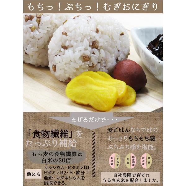 麦ごはんの素 200g 食物繊維 水溶性食物繊維βグルカン 国産 殻付もち麦60%配合 腸活 送料無料セール|watasyoku|04