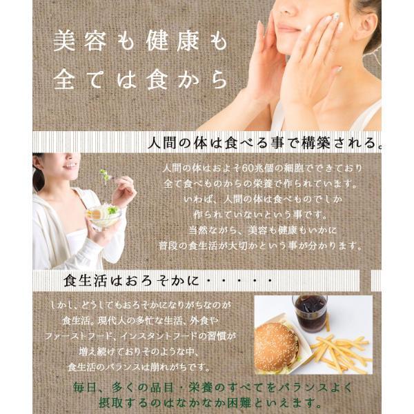 麦ごはんの素 200g 食物繊維 水溶性食物繊維βグルカン 国産 殻付もち麦60%配合 腸活 送料無料セール|watasyoku|06