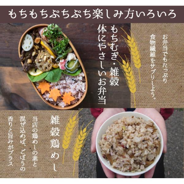 麦ごはんの素 200g 食物繊維 水溶性食物繊維βグルカン 国産 殻付もち麦60%配合 腸活 送料無料セール|watasyoku|08