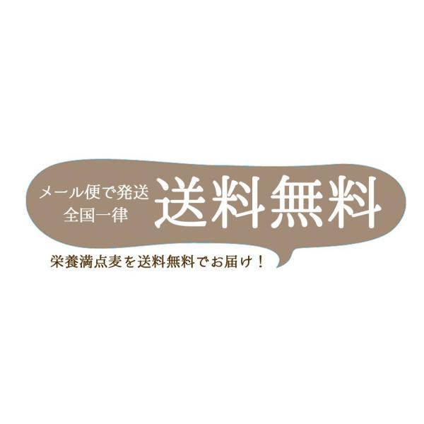 麦ごはんの素 200g 食物繊維 水溶性食物繊維βグルカン 国産 殻付もち麦60%配合 腸活 送料無料セール|watasyoku|09