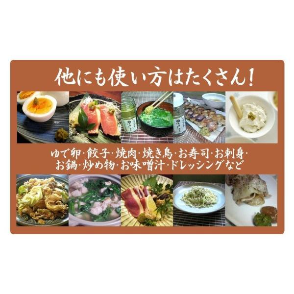 粒 ゆずこしょう 柚子胡椒 青 100g 1000円 ポッキリ ポイント消化 送料無料セール watasyoku 04