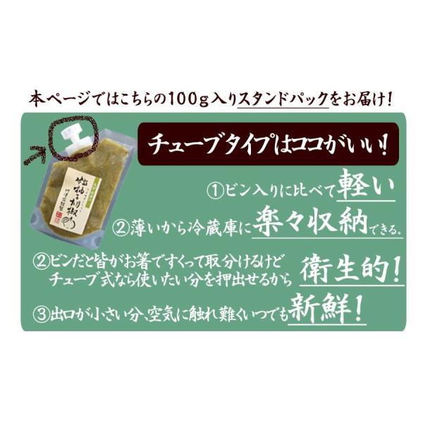 粒 ゆずこしょう 柚子胡椒 青 100g 1000円 ポッキリ ポイント消化 送料無料セール watasyoku 05