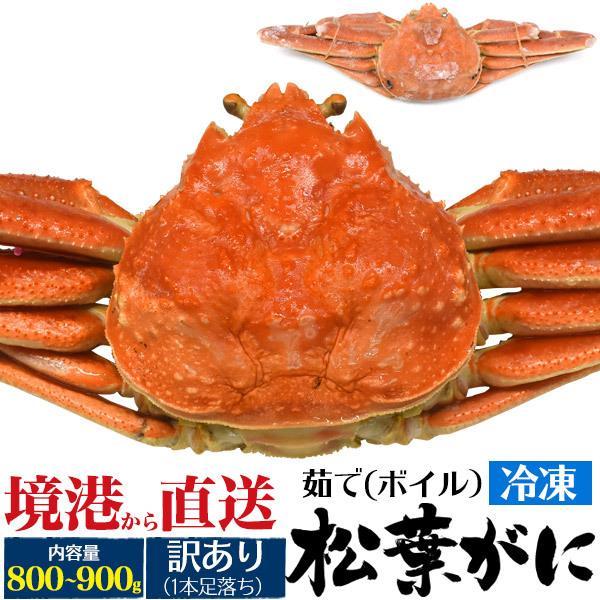 訳あり 茹で 冷凍 松葉ガニ 約800〜900g  送料無料 まつば がに マツバ ガニ 蟹 ボイル 年中発送OK 売り切り終了