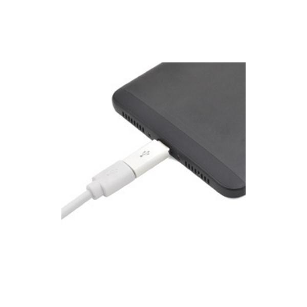 2個セット データ通信 充電対応 USB Type-C変換アダプタ USB Type-C to USB A 充電器 SONY エクスペリア ポイント消化|watch-me|05
