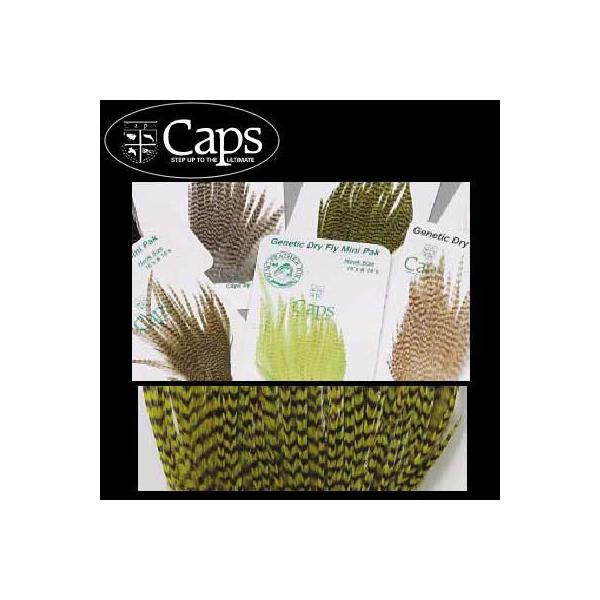 CAPS ドライフライ ハックル ミニパック #10〜12