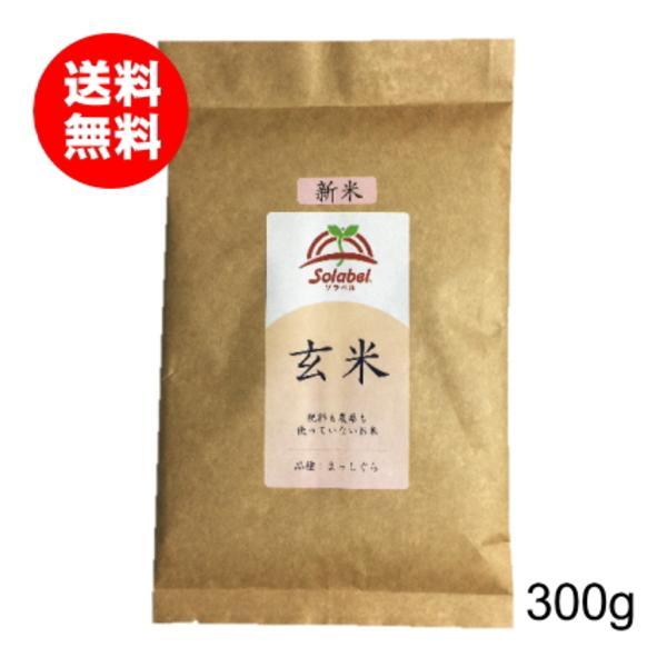 無農薬玄米 特別栽培 まっしぐら お試し 300g 令和3年 送料無