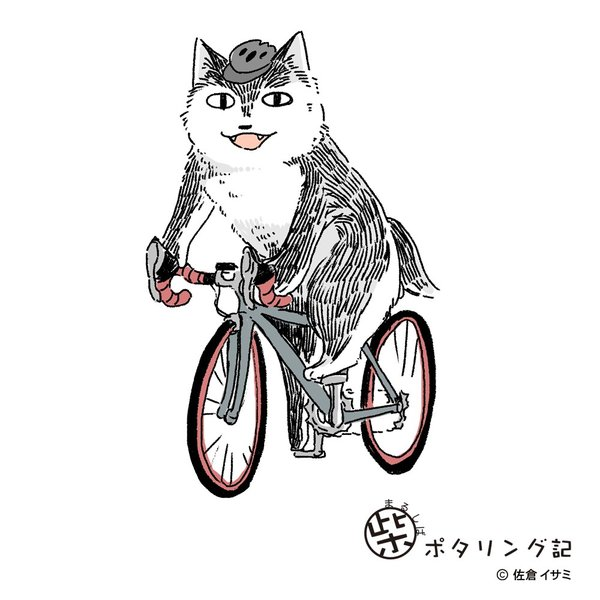 【予約商品・10月上旬発送予定】ミヤオ なりきりサイクルキャップ 予約受付は07/31 23時まで|waveone|06