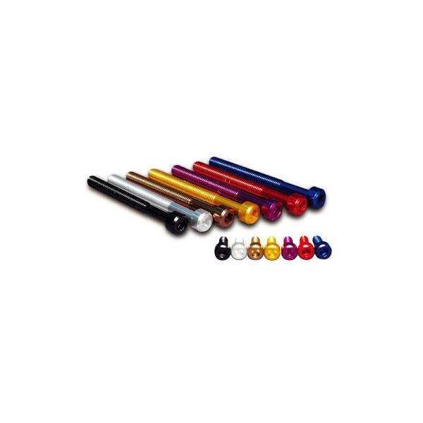 JP MotoMart(DURA-BOLT) JP MotoMart(DURA-BOLT):ジェイピーモトマート(デュラボルト) エンジンカバーボルトキット 20本セット カラー:パープル