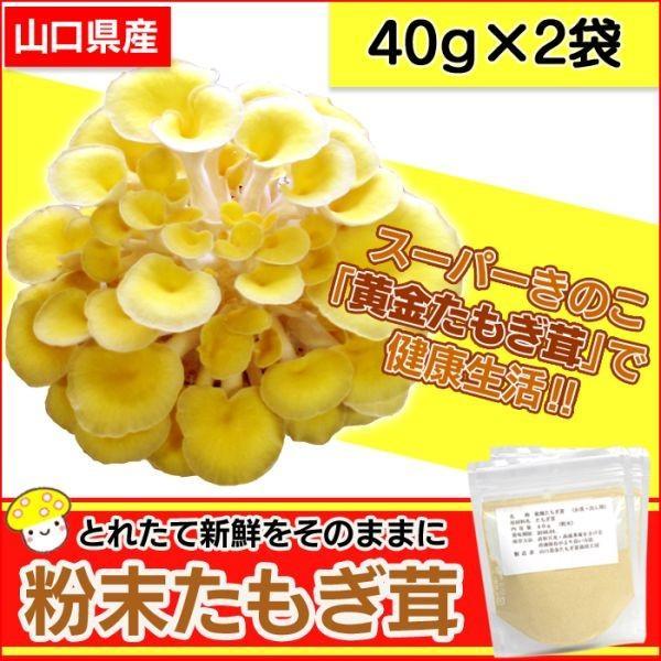 たもぎ茸 粉末 パウダー 黄金たもぎ茸 たもぎだけ タモギダケ 無添加 国産 日本製 40g×2袋 健康食品 健康キノコ レシピ紹介 出汁 だし