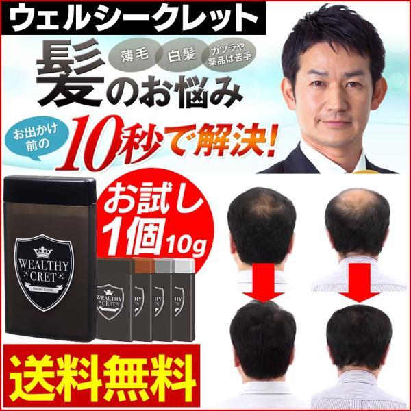 ウェルシークレット WEALTHY CRET お試し 10g 頭髪 カバー 薄毛隠し 瞬間増毛 増毛パウダー ふりかけ ヘアーファンデーション トライアル10g 1051-981 髪の毛|wide