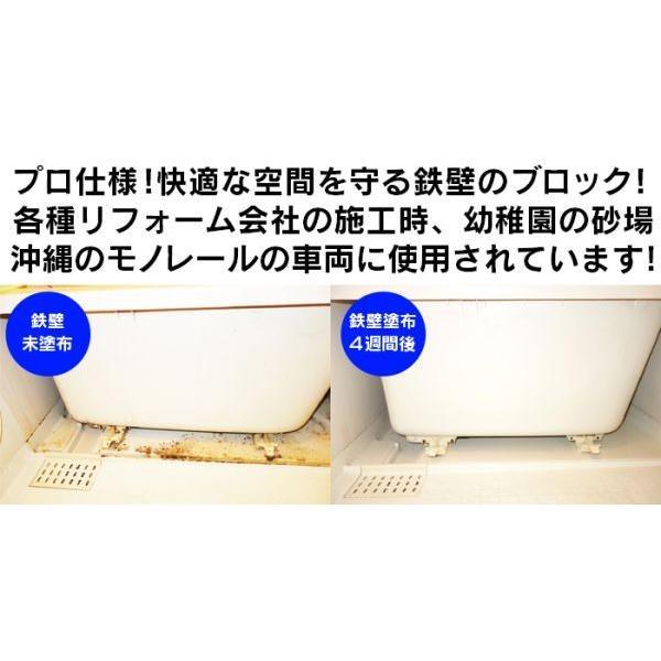 カビスプレー 300ml こすらない 日本製 部屋 壁紙 エアコン 下駄箱 防カビ・抗菌・消臭コーティング剤 プロ仕様 カビブロックスーパー鉄壁|wide|02