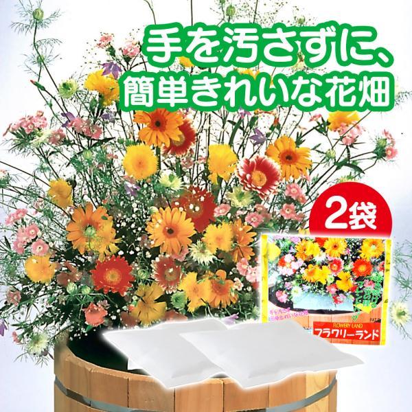 敬老の日 ギフト 2021 花の種 ブレンドパック フラワリーランド 2パック 秋蒔き 春蒔き 栽培 種まき 簡単 ガーデニング 庭造り 珍しい花の種