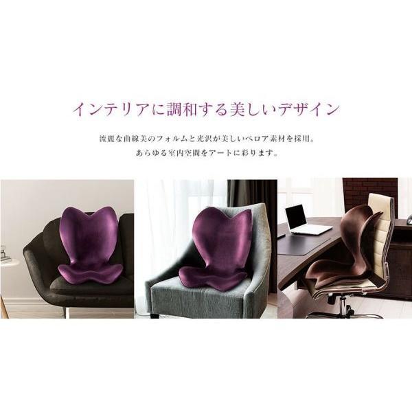1年保証 ポイント10倍 スタイル エレガント Style ELEGANT MTG 座椅子 腰痛対策 骨盤 姿勢 背筋 補正 矯正 猫背 健康 チェア クッション 背もたれ おしゃれ|wide|06