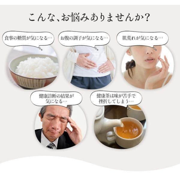 菊芋茶 健康茶 キクイモ茶 国産 日本製 セット 1袋 30g 15包 15パック ティーバッグ 菊芋100% 山口県産 菊芋健康茶 焙煎 焙煎茶 イヌリン ノンカフェイン|wide|04