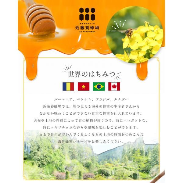 はちみつ 蜂蜜 低温加熱 瓶詰 140g × 4本 ハチミツ アカシア 百花 ライチ コーヒー セット プレゼント 2020|wide|03