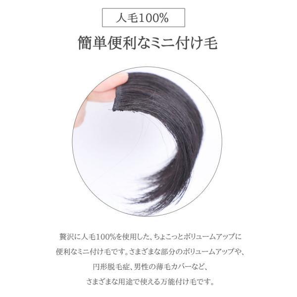 ミニつけ毛 人毛100% S【2個セット】増毛 ポイントウィッグ 私元気 MINI7
