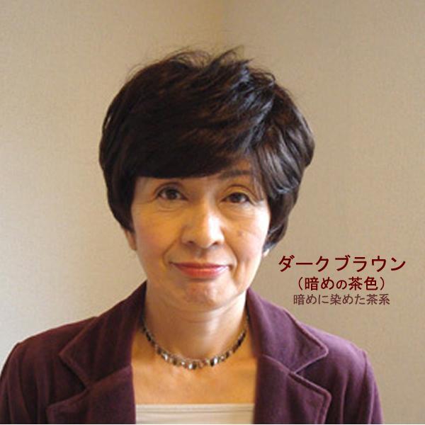 ウィッグ ショート 送料無料 ショートウィッグ ミセス ミセスウィッグ 医療 白髪 かつら tm2 wigwigrunes 04