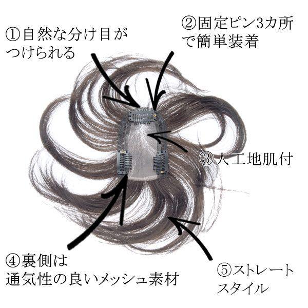 ウィッグ ヘアピース ミセス 部分ウィッグ かつら 送料無料 分け目 前髪 カバー 総手植え tk30