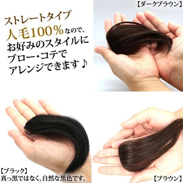 ウィッグ ヘアピース  人毛100% 円形脱毛症 部分ウィッグ かつら 送料無料 メッシュ kz1|wigwigrunes|06