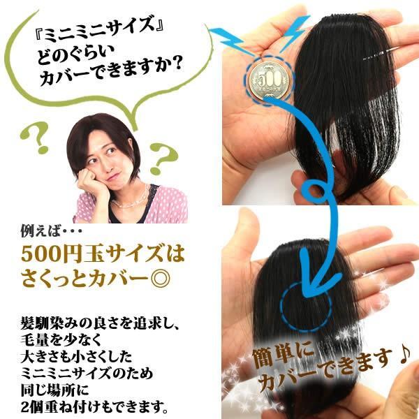 ウィッグ ヘアピース  人毛100% 円形脱毛症 部分ウィッグ かつら 送料無料 メッシュ kz1|wigwigrunes|08