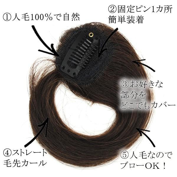 ウィッグ ヘアピース  人毛100% 円形脱毛症 部分ウィッグ かつら 送料無料 増毛 tk9|wigwigrunes|04