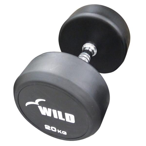 固定式ダンベル 20kg WF / 筋トレ ジムダンベル バーベル ベンチプレス トレーニング器具 腹筋 フラットベンチ