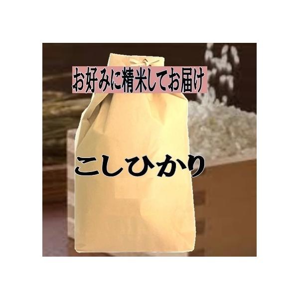 新米入荷 玄米仕立 徳島県産 コシヒカリ こしひかり 令和2年産 玄米5kg お好みに精米してお届け 送料無料 一部除く