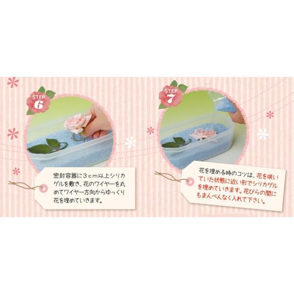 豊田化工株式会社 シリカゲル ドライフラワー用乾燥剤 1kg A|wise-life|05