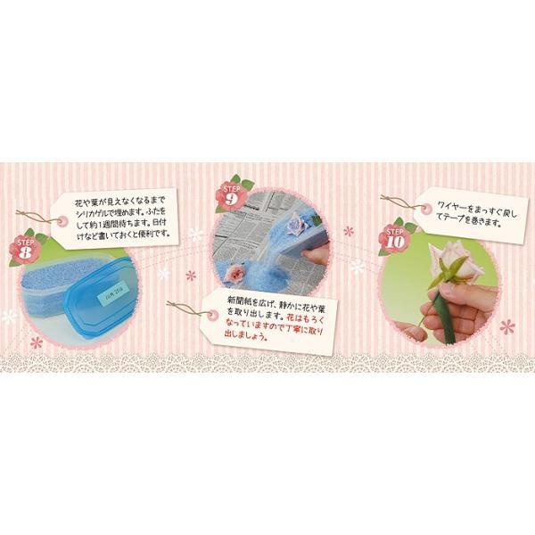 豊田化工株式会社 シリカゲル ドライフラワー用乾燥剤 1kg A|wise-life|06