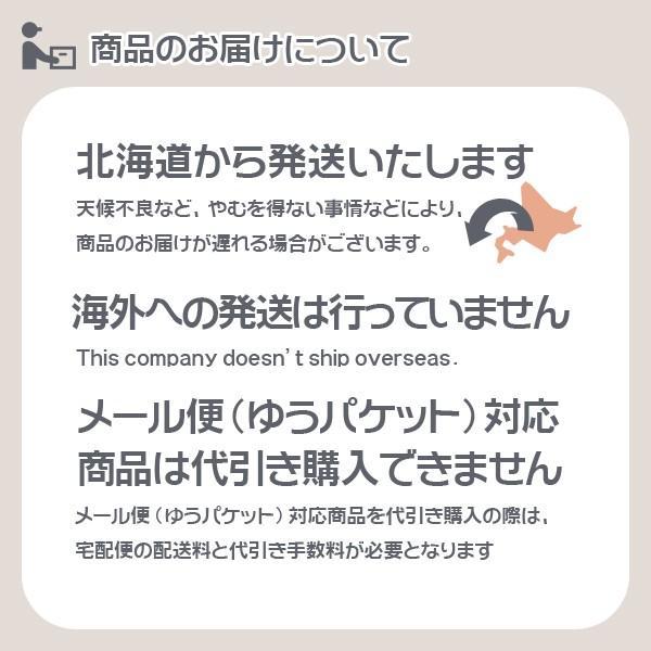 豊田化工株式会社 シリカゲル ドライフラワー用乾燥剤 1kg A|wise-life|09