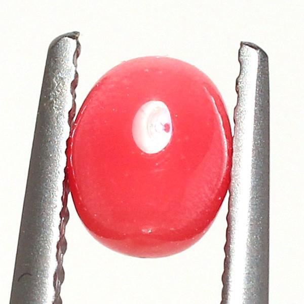 コンクパール0.893ct 約5.8mm×4.7mm天然の白い班あるが形・色・艶良い火炎模様も見らる鑑別書付|wizem|08