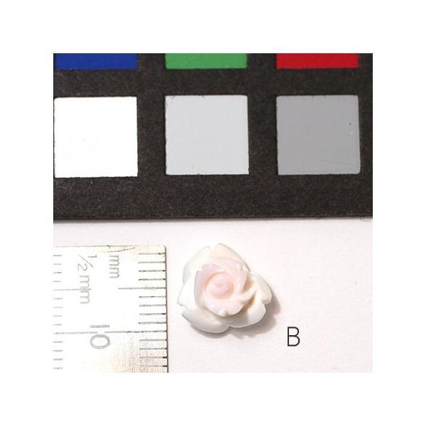 コンクシェルのバラ 直径約10mm 材料 バラ売り1個/ポスト投函対応送料270円|wizem|03